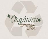 Mutirão retira lixo e resíduos da Reserva Canaã