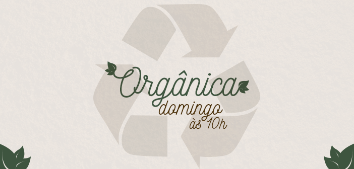Projeto Reciclando Vidas \ lixo marinho \ Hortas Pedagógicas \ olericultura